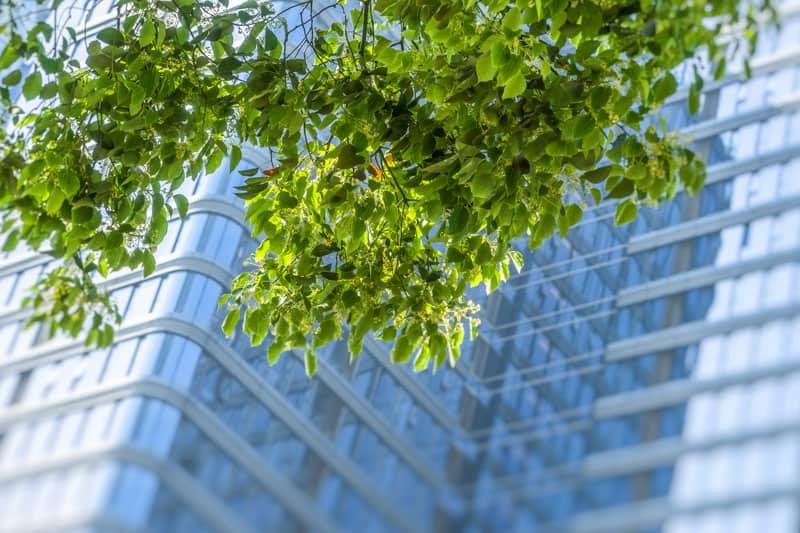 Lower VOCs contribute to healthier air